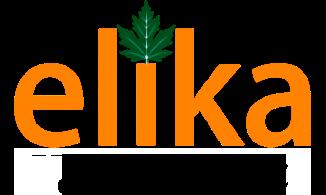 Abelia Grandiflora ''Kaleidoscope''